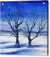 Huddled On A Snowy Field.  Acrylic Print