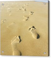 Human Footsteps In The Sand Acrylic Print