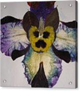 Human Insect Acrylic Print