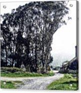 Humboldt Bay National Wildlife Refuge Acrylic Print