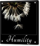 Humility Acrylic Print