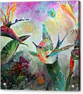 Hummingbird And Birds Of Paradise Tropical Watercolor Acrylic Print