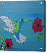 Hummingbird And Flowers Acrylic Print