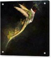 Hummingbird Hotty Totty Style Acrylic Print