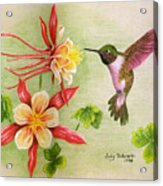 Hummingbird's Delight Acrylic Print