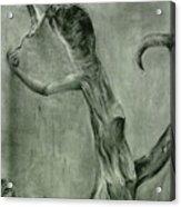 Hunger Acrylic Print