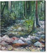 Hutan Perdic Forest Malaysia 2016 Acrylic Print