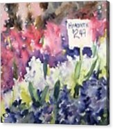 Hyacinths Acrylic Print