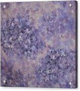 Hydrangea Blossom Abstract 2 Acrylic Print