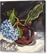 Hydrangea In A Bean Pot Acrylic Print