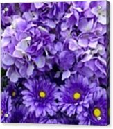 Hydrangeas And Daisies So Purple Acrylic Print