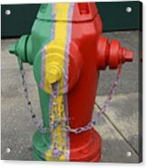Hydrant With A Facelift Acrylic Print