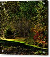Hylebos In Autumn Acrylic Print