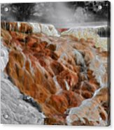 Hymen Terrace Mammoth Hot Springs Yellowstone Park Wy Acrylic Print
