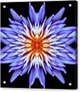 Hypnotic Acrylic Print
