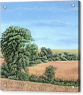 I-74 Soybean Field Acrylic Print