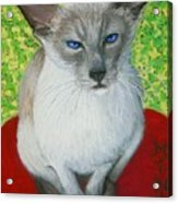 I Am Siamese If You Please Acrylic Print