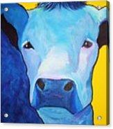 I Am So Blue Acrylic Print