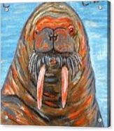 I Am The Walrus Acrylic Print