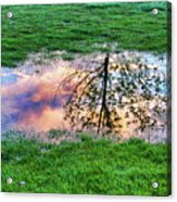 I Can See China - Hole In The Grass Acrylic Print