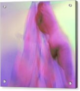 I Dream In Colors Acrylic Print