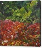 I Dream Of Poppies Acrylic Print