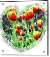 I Heart Tulips Acrylic Print