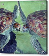I Kissed A Turtle And I Liked It Acrylic Print