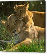 I Love My Mother Acrylic Print