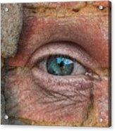 I Spy With My Little Eye Acrylic Print