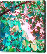 I Wonder What Leaves Think Acrylic Print