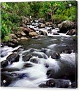 Iao Valley Stream Acrylic Print