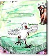 Ibis Hopping Acrylic Print