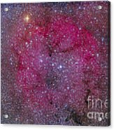 Ic 1396 And Garnet Star In Cepheus Acrylic Print