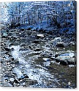 Ice Blue Forest Acrylic Print