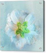 Ice Blue Under Acrylic Print