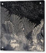 Ice Crystals Form Feather Shapes On Ice Acrylic Print