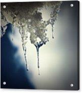 Ice Photo 4 Acrylic Print