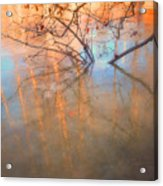 Ice Reflections 2 Acrylic Print