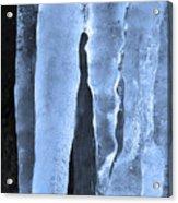 Ice Sculpture Acrylic Print