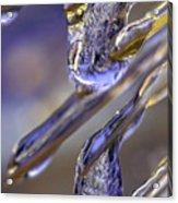 Ice Storm II Acrylic Print