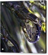 Ice Storm IIi Acrylic Print