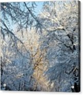 Ice Storm On The 6th IIi Acrylic Print