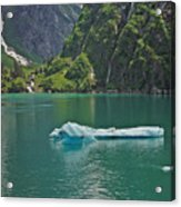 Ice Tracy Arm Alaska Acrylic Print
