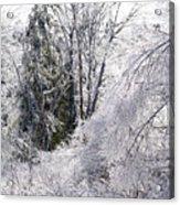 Ice Wonderland Acrylic Print