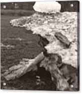Iceberg Silo Acrylic Print