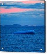 Iceberg Sunset Acrylic Print