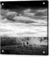 Iceland Black And White Landscape Haukadalur Acrylic Print