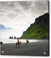 Icelandic Horses On The Beach In Vik Iceland Acrylic Print