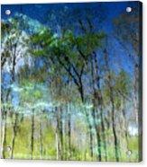 Ichetucknee Reflections Acrylic Print